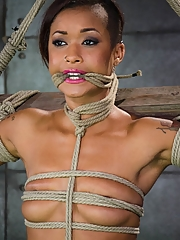 Skin Diamond 16 pictures