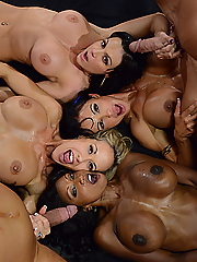 Diamond Jackson and Jewels Jade compete with Brandi Love and Kendra Lust for the title